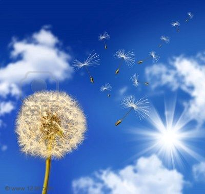 Soirée méditation 30/10/2020 - respiration